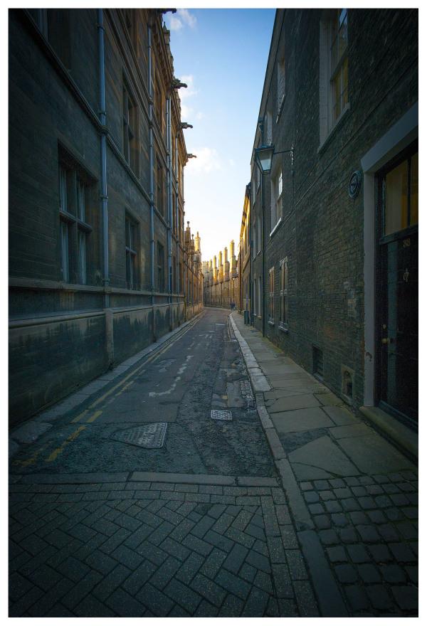 Sunlight Alley