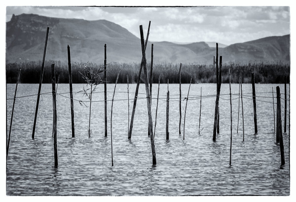 Fish Traps, Lake Albufera
