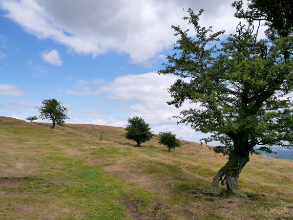 malvern hills gloucestershire rocks walks