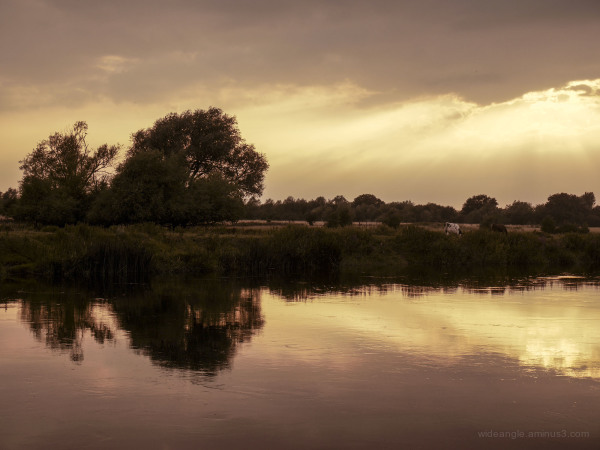 An evening by the River Trent