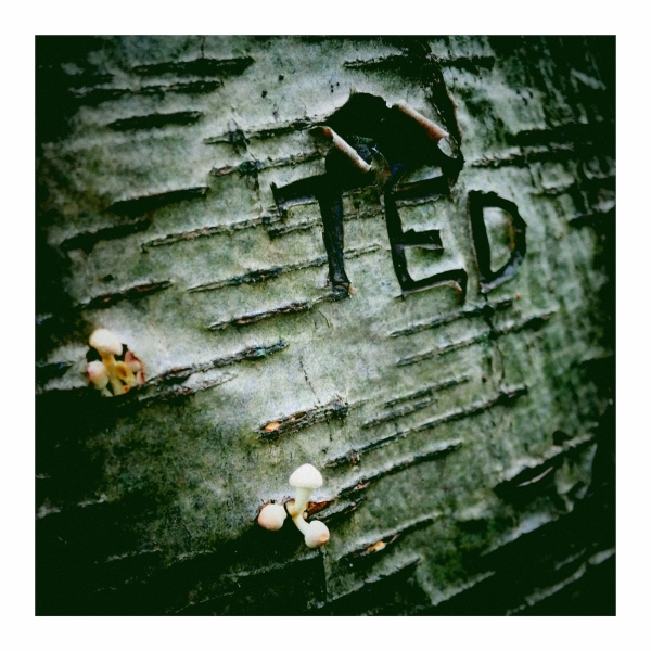Ted Was 'Ere