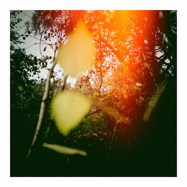 light leaks with android