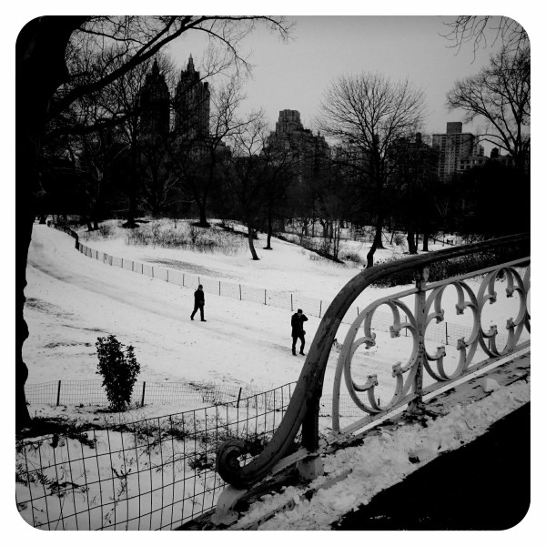Snowy Day, Central Park, NYC