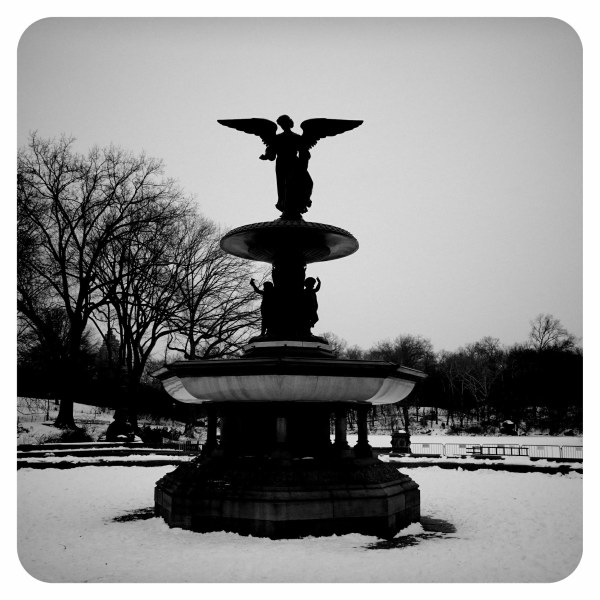 central park new york city urban winter b&w