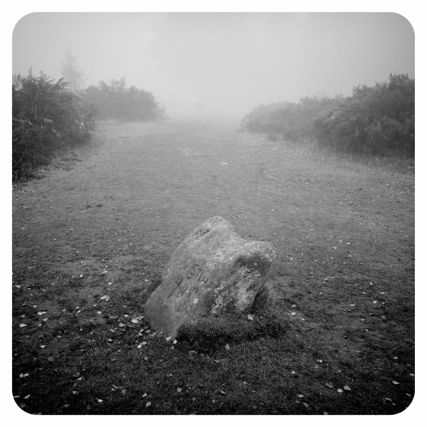 The King Stone at Nine Ladies