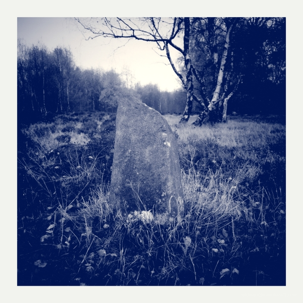 Another Standing Stone on the Moor