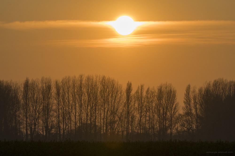 sunset shardlow spring golden