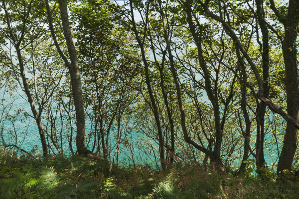 Walking by the Turquoise Sea, Cornwall