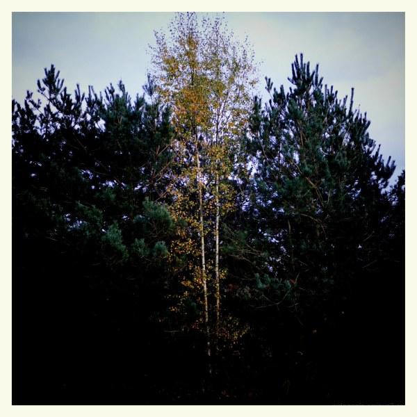 autumn seasons storms darker skies