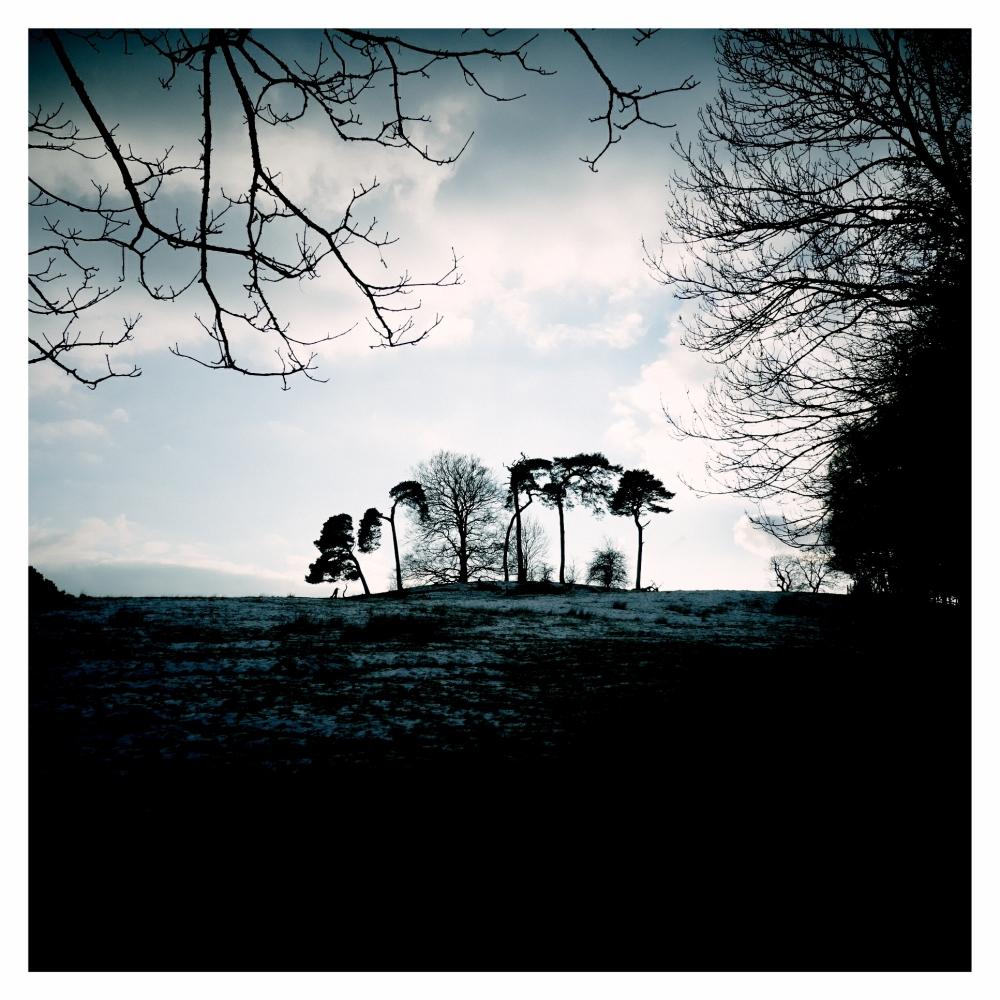 landscape light countryside nature