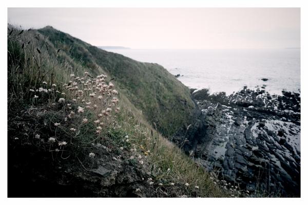 beaches holidays seaside coastal landscape