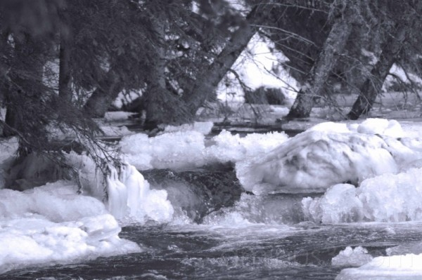 ice damn black and white prairie creek