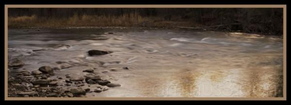 golden cascade..