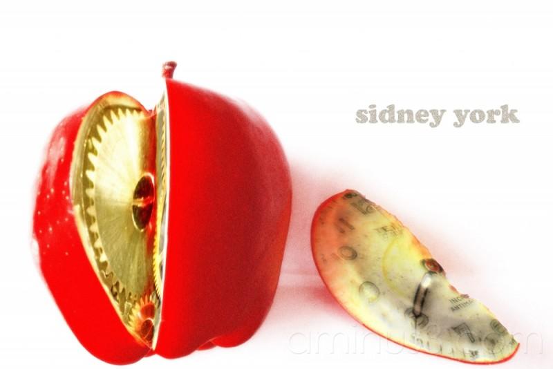 sidney york