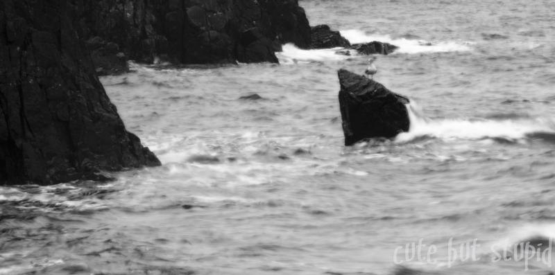 rough seas...