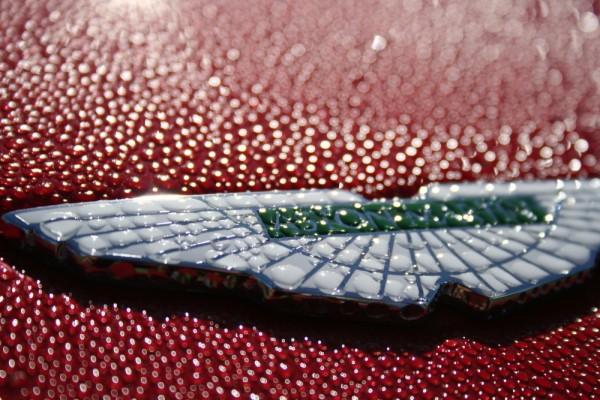 Aston Martin and dew drops