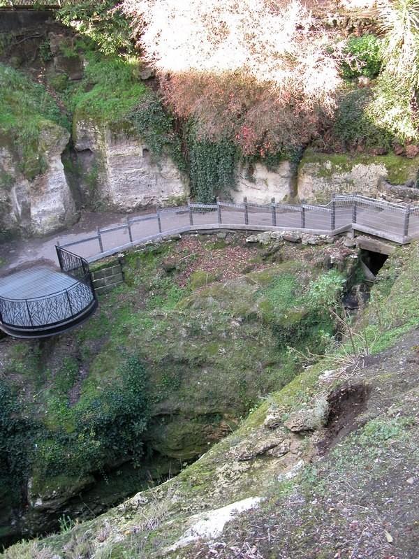 Mt Gambier cave garden