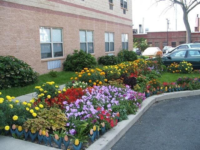 Garden of Seniors