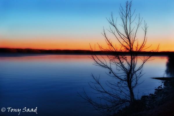 silouhette sunset