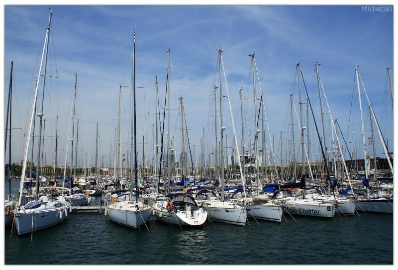the port of Barcelona