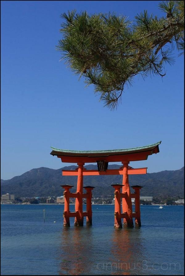 TORI of ITUKUSHIMA Shrine