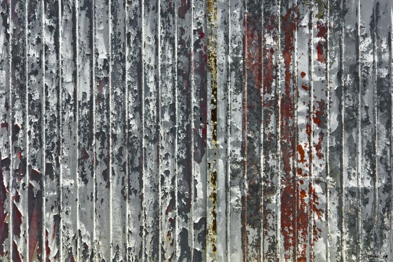 paint on the fence