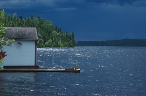 dock and pending storm canada