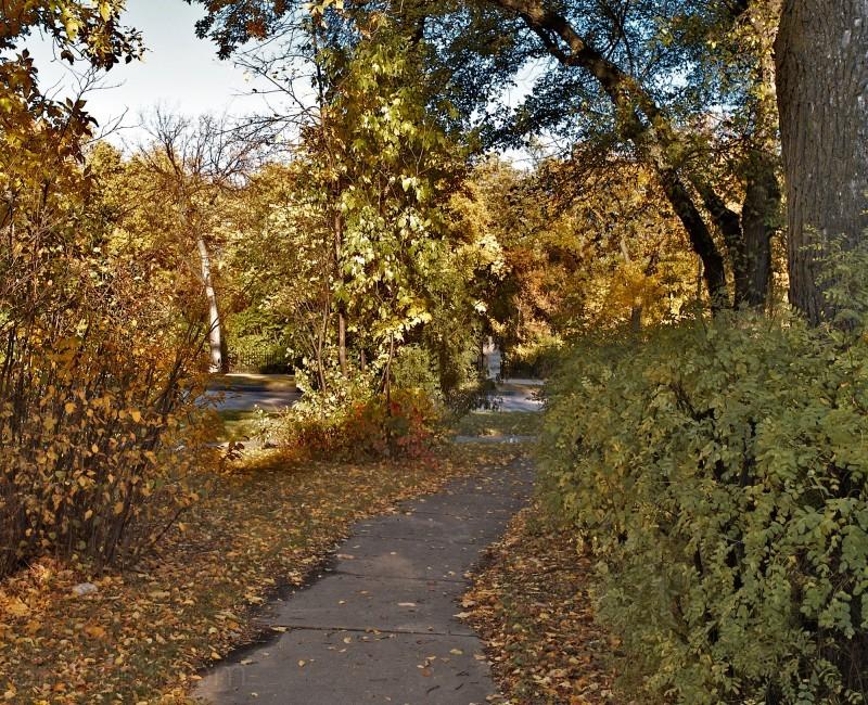 Wellington Crescent Autumn Winnipeg Canada