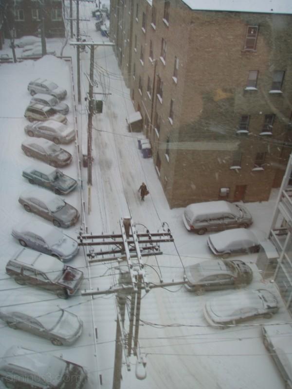 snowy walk winnipeg canada