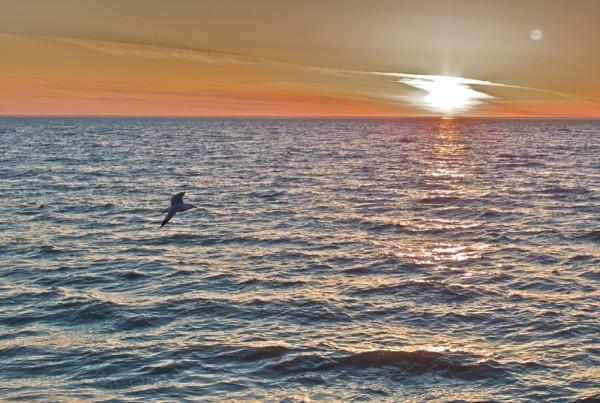 seagull lake winnipeg lester beach