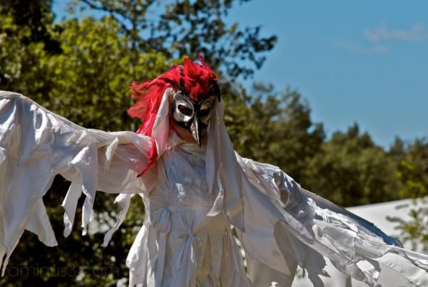 chickenhead winnipeg folk festival