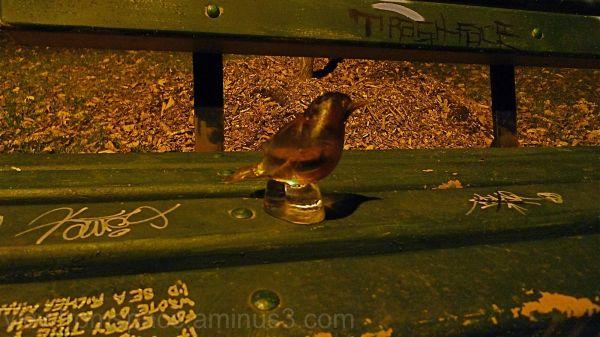 glass bird on park bench winnipeg, canada