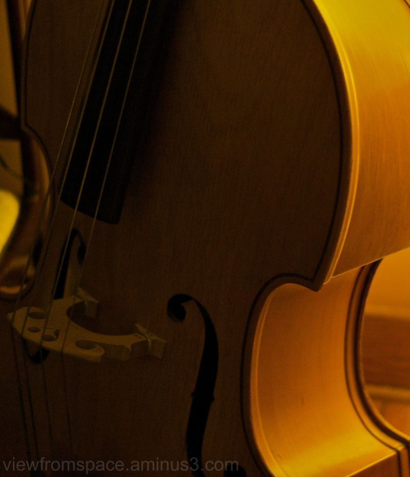 old double bass