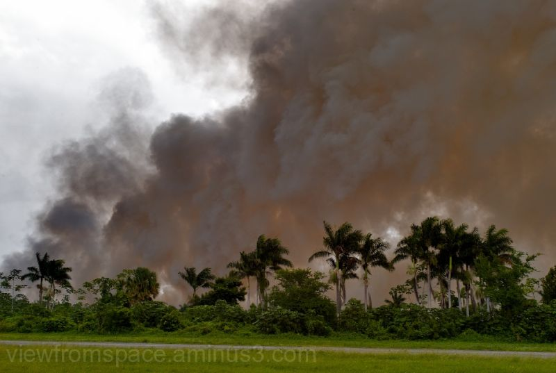 burning morass jamaica