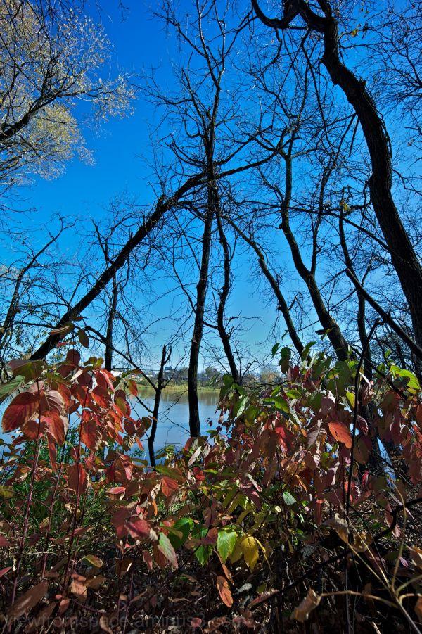 riverview winnipeg red river manitoba