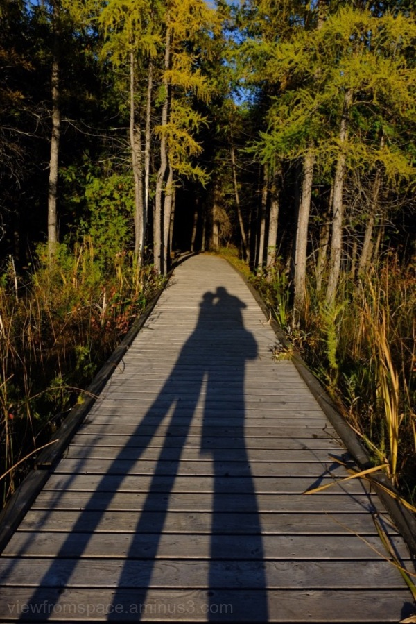 brokenhead wetland boardwalk trail lake winnipeg k
