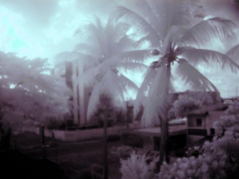 Recife Infrared