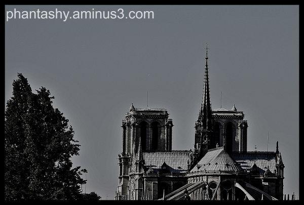 Cathédrale Notre Dame de Paris(outside), France