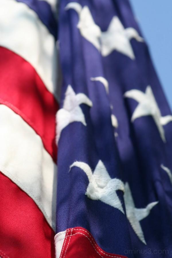 Allegiance Pledged.