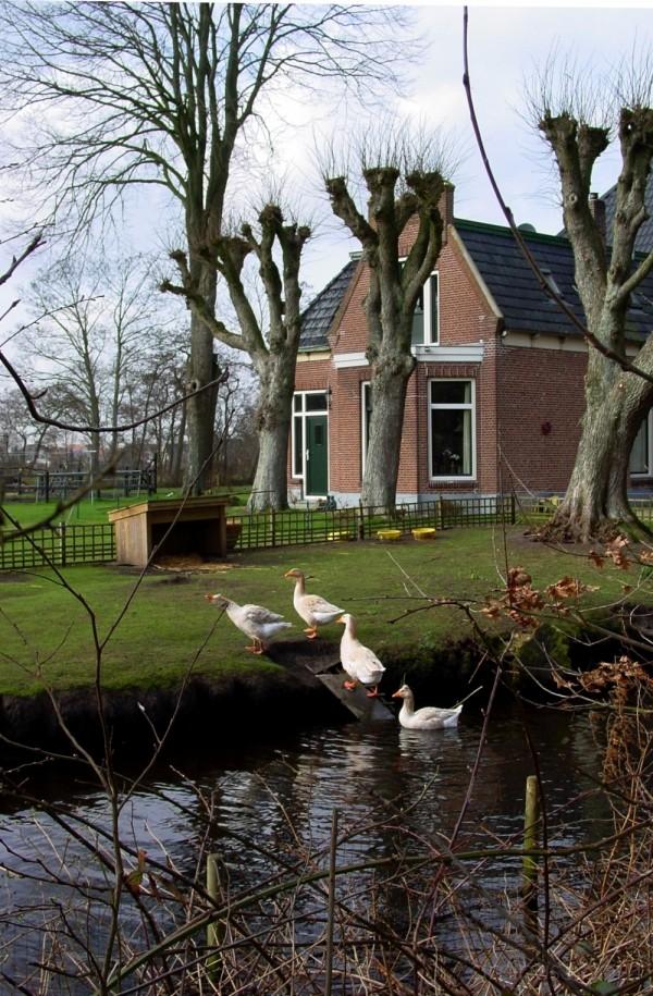 Hurdegaryp: Ot en Sien farm