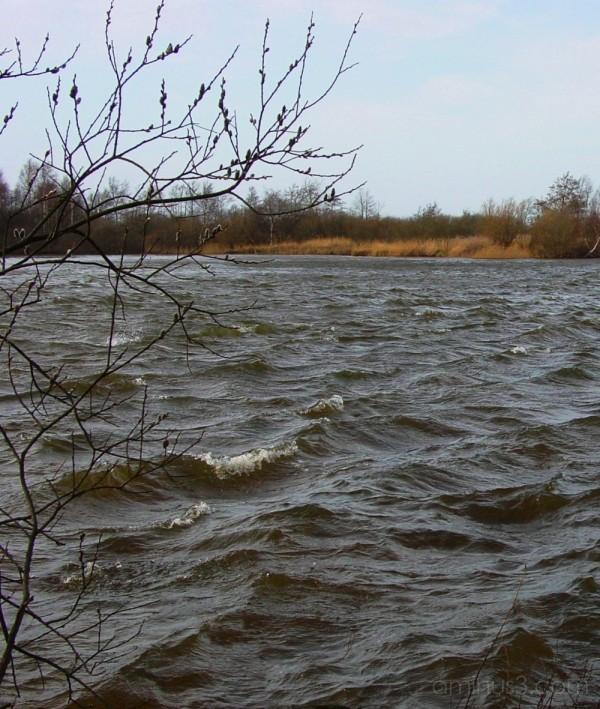 Hurdegaryp: storm yn 't reidlân