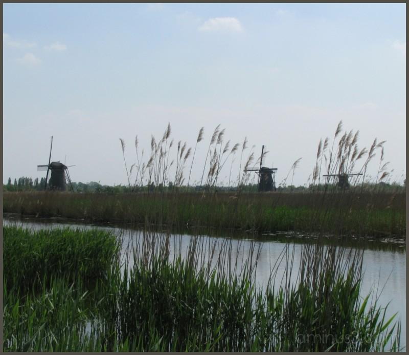 Kinderdijk - three mills