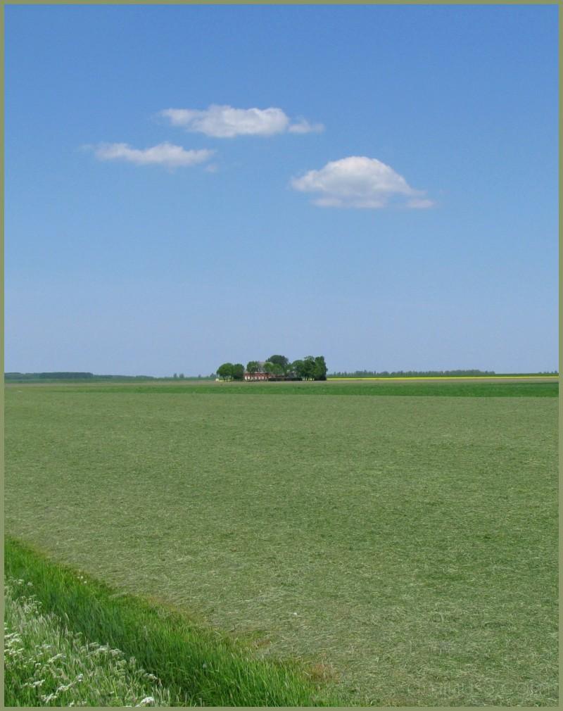 Landscape near Warfstermûne