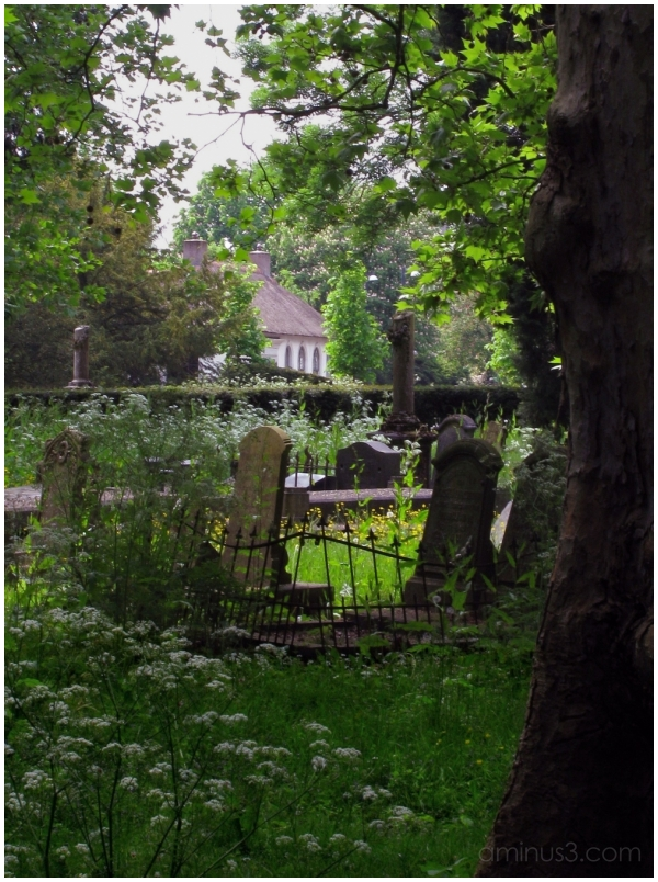 Old Cemetery Leeuwarden