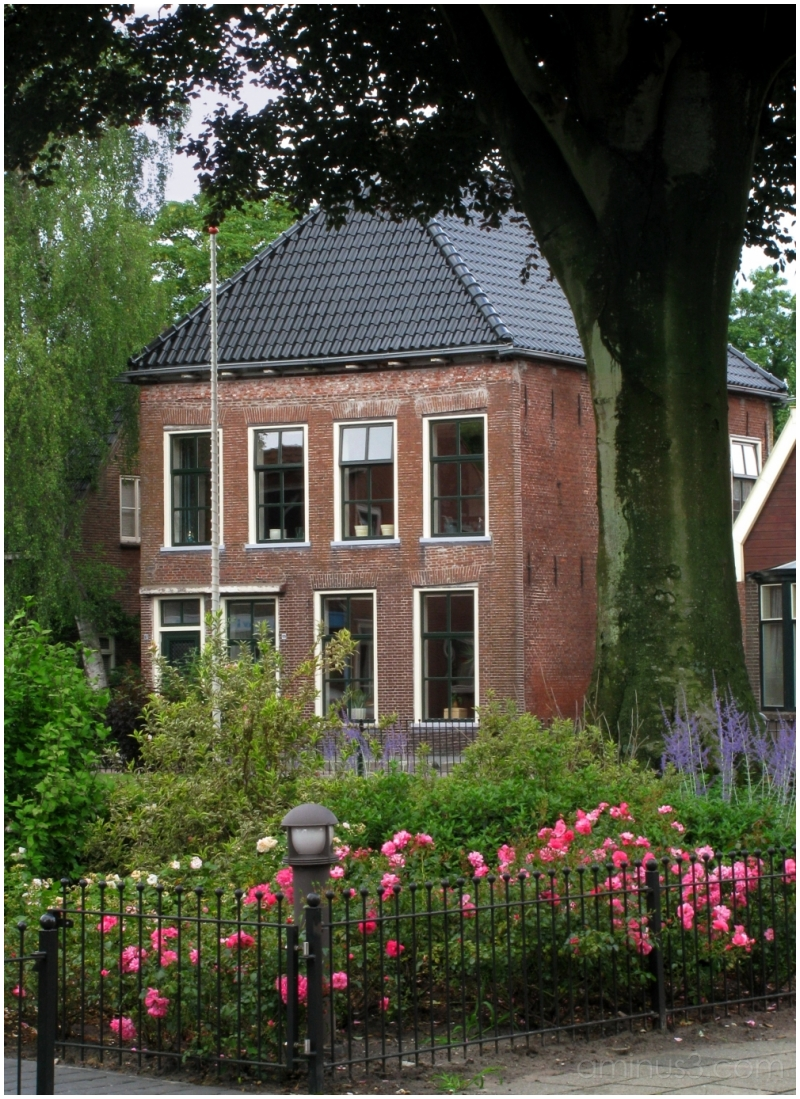 Old House with Roses
