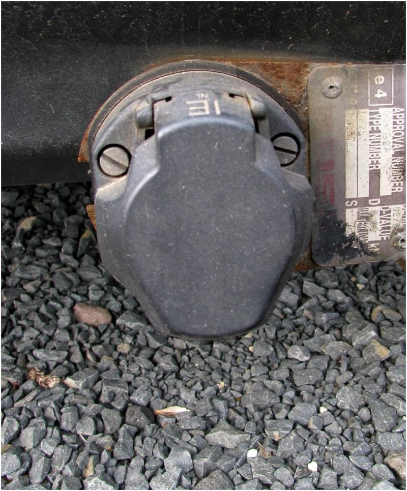 Car Turtle