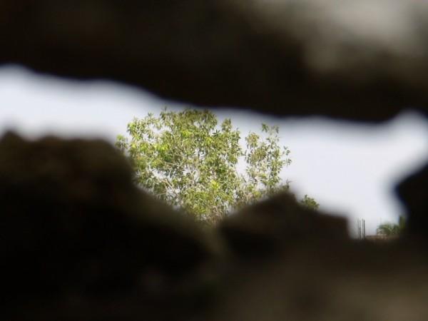 Peeping through wall