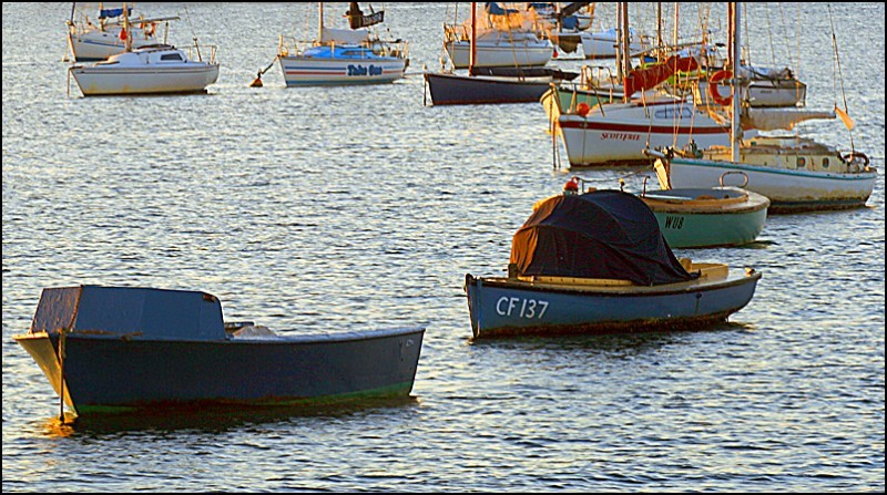 Boats in the late sunlight