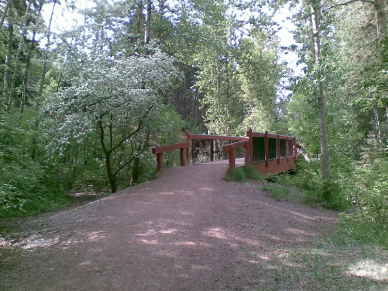 Bridge #234 in Mill Creek
