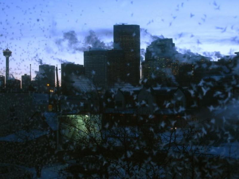 Calgary skyline on a cold january sunset